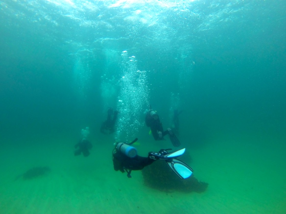 Our whole under water crew following our instructor Michael along the Gordon's Bay Underwater Trail.