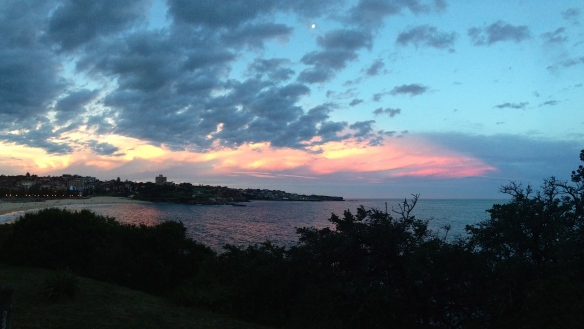 Another incredible Coogee sunset to close our day of snorkeling