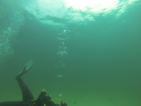 Rachel, our dive guide, displaying her master bubble-blowing skills.
