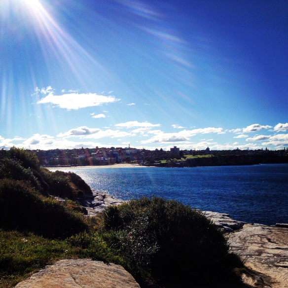 View from the Coogee Cliffs never gets old