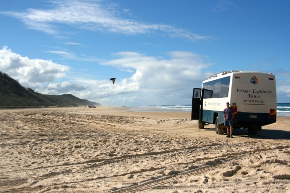 4WD tour of Fraser Island (just north of Great Sandy)