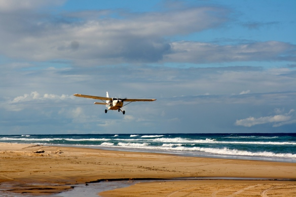 Fraser Island is one of the only 2 locations on earth where beach plane landings are permitted.