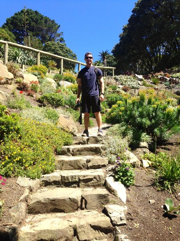 Wellington's Botanical Gardens