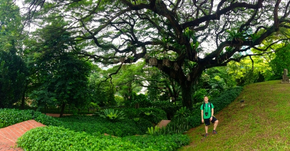 Downtown at Fort Canning Park