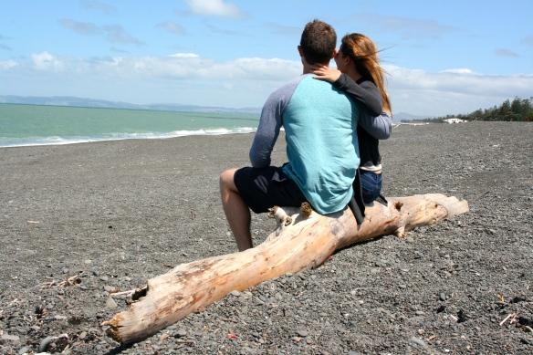 Black pebble beach in Napier.