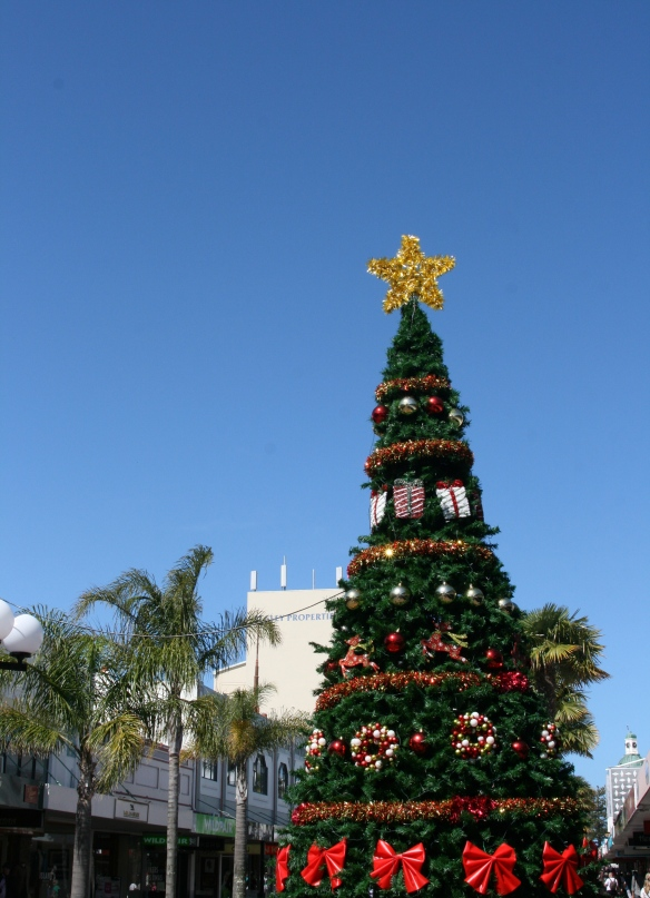 Christmas trees and Palm trees.
