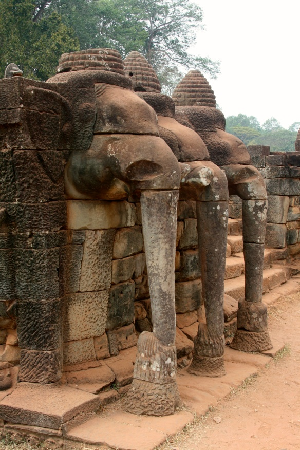 The Elephant's Terrace